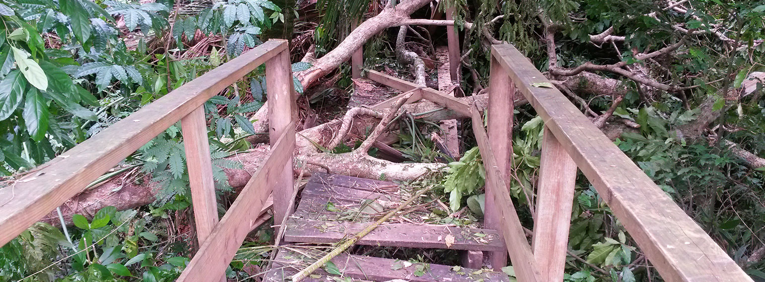 hurricane-earl-belize-protected-areas-3